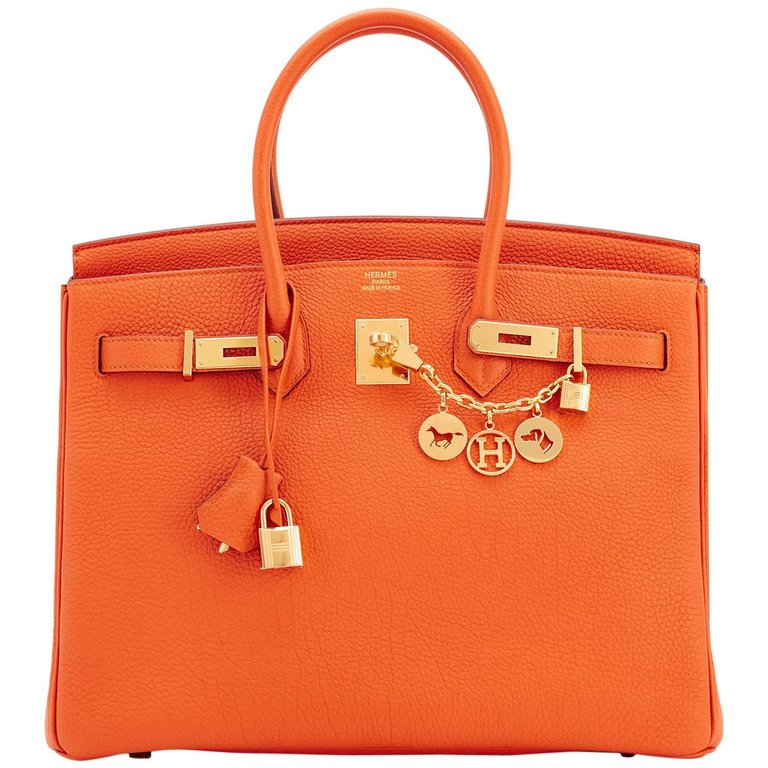 3172233 master - Is Hermes Birkin Bag Worth the Price